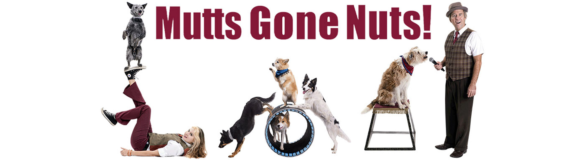 mutts-gone-nuts